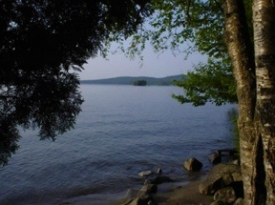 Loon Trail – Maidstone State Forest